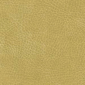 buckskin fabric swatch